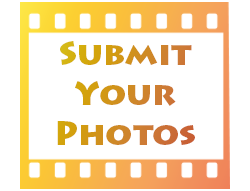 Submit Your Photos